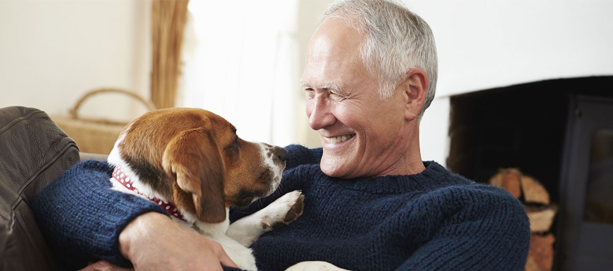 Home palliative care for pets